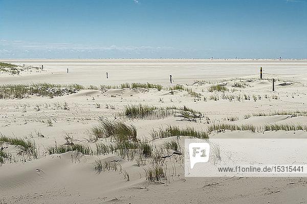 Deutschland  Schleswig-Holstein  Sankt Peter-Ording  Sandstrand
