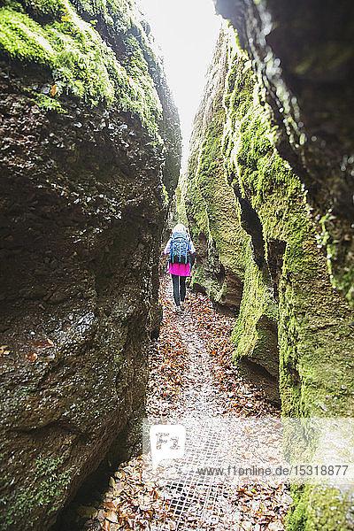 Wanderer auf dem Weg durch enge Schlucht  Drachenschlucht  Thüringer Wald  Eisenach  Deutschland