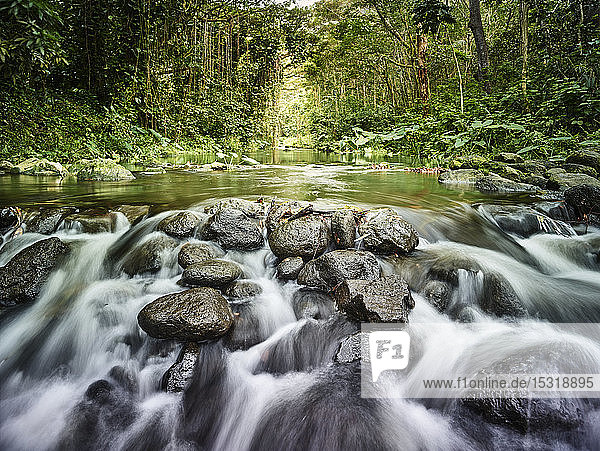Fluss fließt durch Felsen im Regenwald im Waipio-Tal