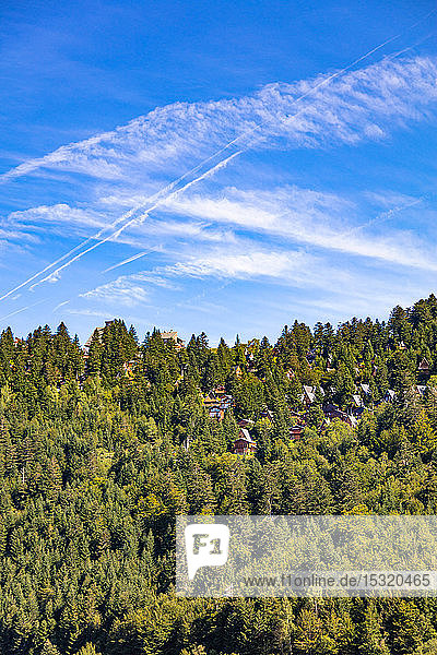 View of chalets in the middle of the fir trees of the ski resort Guzet-snow in summer. Couserans-Pyrenees  Ustou Valley  Ariege  Occitanie  France.