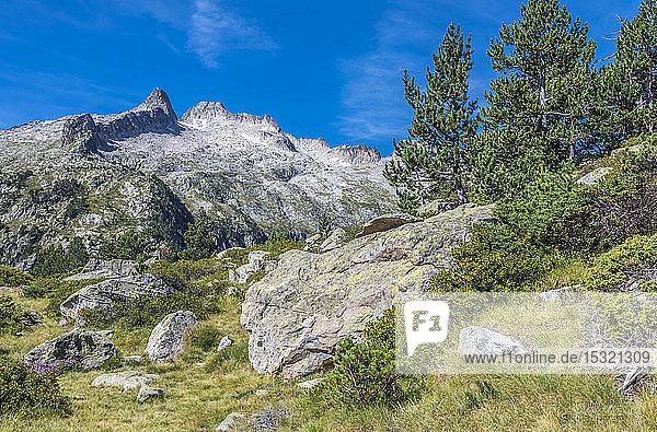 France  Hautes-Pyrenees  Haute Vallee d'Aure  Neouvielle National Nature Reserve  La Neouvielle peak (or Aubert) (2863 meters high) seen from La Hourquette d'Aubert pathway