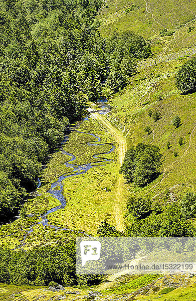 France  Pyrenees National Park  Hautes-Pyrenees  Hautacam mountain  meander of the Isaby river