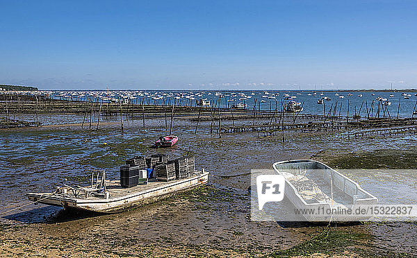 France  Gironde  Arcachon Bay  Cap-Ferret  Baie du Canon at low tide and oyster parks