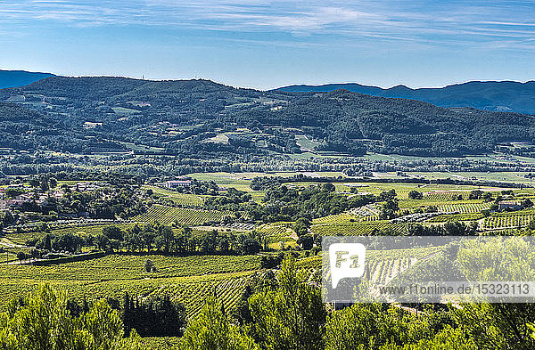 France  Drome  France  Drome  Vinsobres  vines at Vinsobres