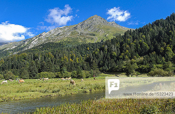 France,  Pyrenees National Park,  Occitanie,  Val d'Azun,  Estaing lake