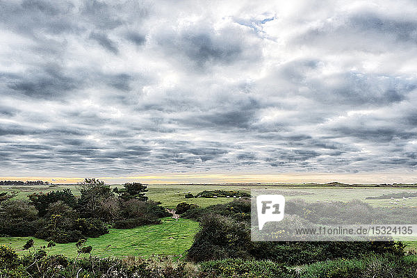 Normandy. Manche. Pointe d'Agon Coutainville. Nature preservation area. Nature reserve during the winter.
