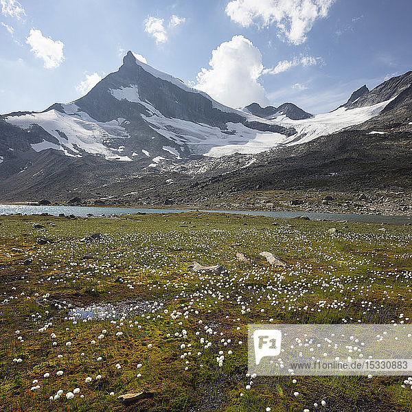 Mountain Bjornbrean in Jotunheimen National Park  Norway