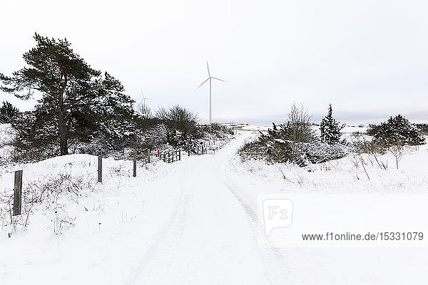 Rural road covered with snow