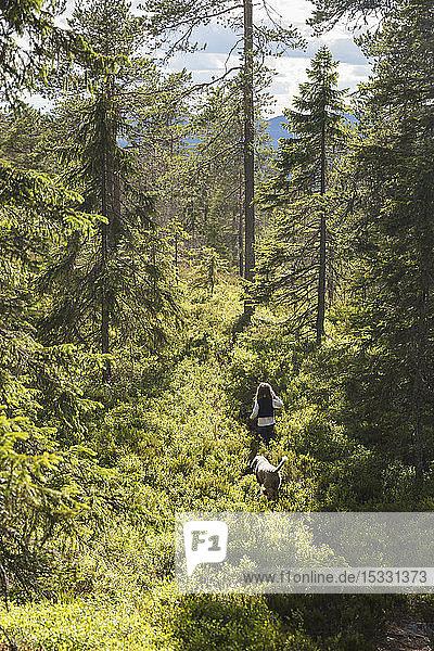 Girl walking in forest Girl walking in forest
