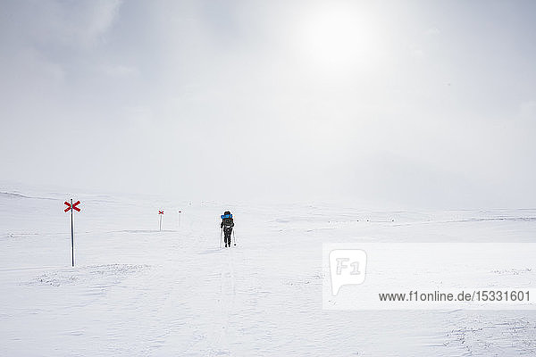 Woman skiing by markers on Kungsleden trail in Lapland  Sweden