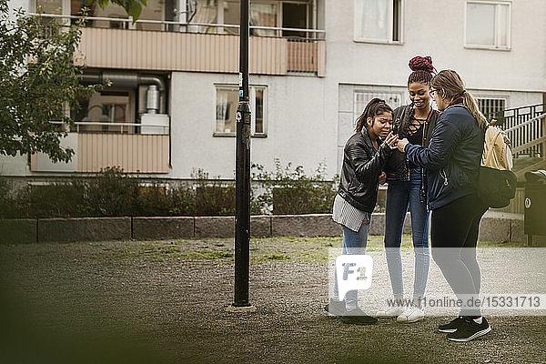 Teenager-Mädchen benutzen ihr Smartphone im Park
