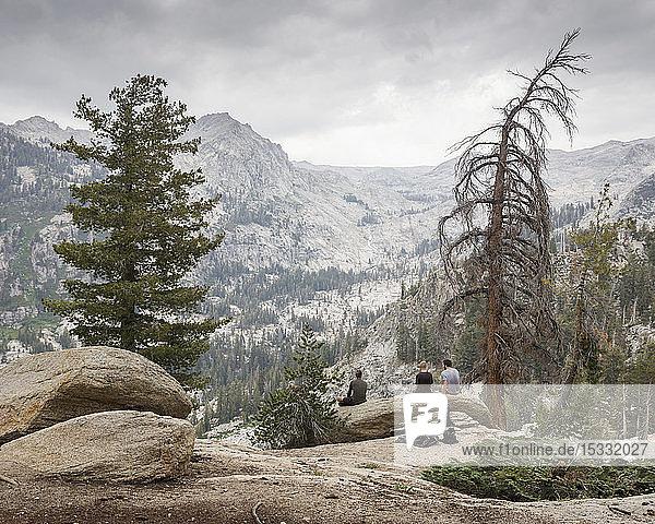 Männer sitzen auf einem Baumstamm im Sequoia National Park in Kalifornien