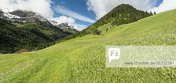 Austria  Tyrol  Allgau Alps  Hornbach valley  a side valley of the Lech watershed  barn