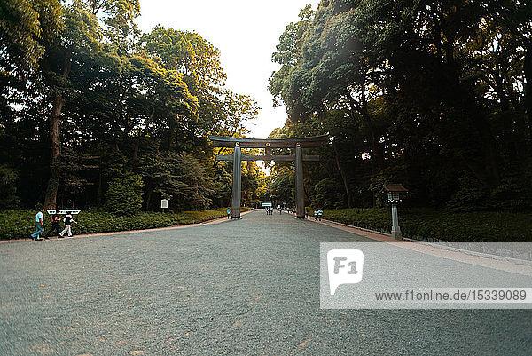 Torii gate at Meiji Jingu shrine in Tokyo