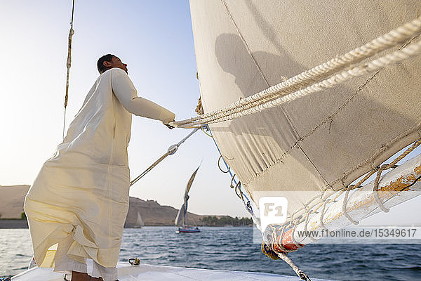 An Egyptian man stands on the bow of a traditional Felucca sailboat with wooden masts and cotton sails on the River Nile  Aswan  Egypt  North Africa  Africa
