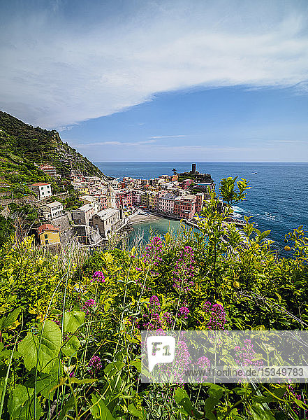 Vernazza Village  elevated view  Cinque Terre  UNESCO World Heritage Site  Liguria  Italy  Europe
