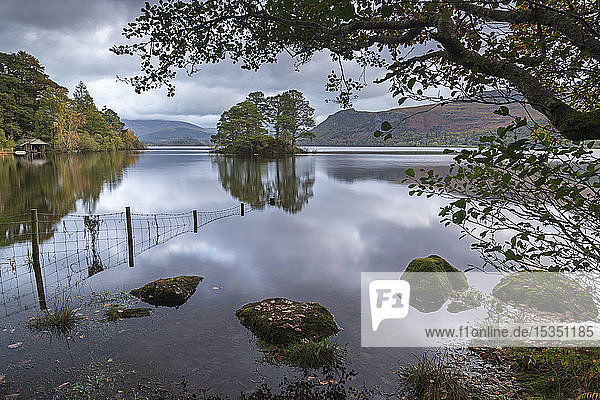 Early morning on the shores of Derwent Water in the Lake District National Park  UNESCO World Heritage Site  Cumbria  England  United Kingdom  Europe