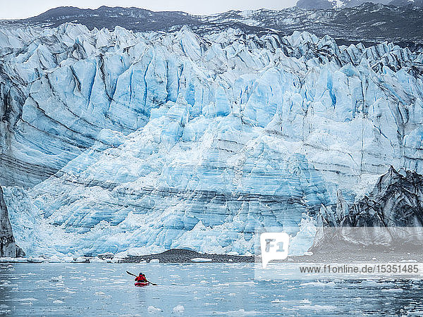 A kayaker paddling in front of Lamplugh Glacier  Glacier Bay National Park and Preserve  UNESCO World Heritage Site  Alaska  United States of America  North America