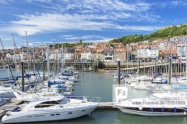 Scarborough harbour and marina in South Bay  Scarborough  North Yorkshire  England  United Kingdom  Europe
