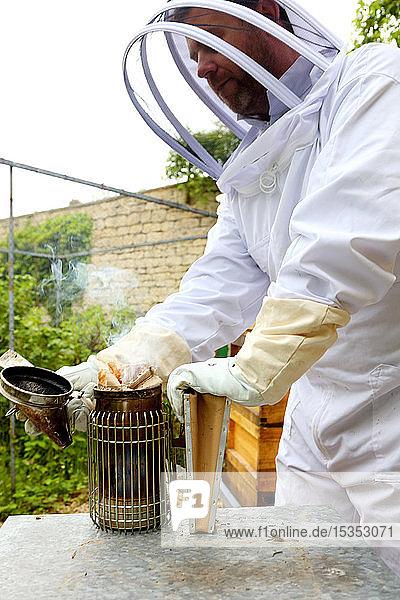 Male beekeeper preparing bee smoker in walled garden