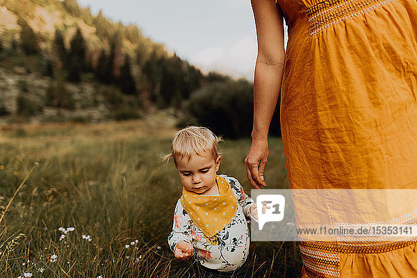 Pregnant mother with toddler daughter in rural valley  cropped  Mineral King  California  USA