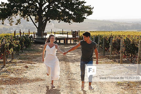 Couple walking along vineyard  Cape Town  South Africa