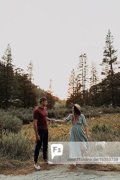 Romantisches junges Paar hält Händchen im ländlichen Tal  Mineral King  Kalifornien  USA