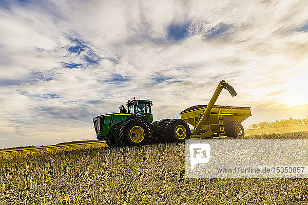A tractor with a grain cart waiting for the next load from a canola harvest; Legal  Alberta  Canada