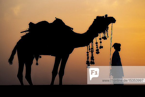 Young boy standing with his decorated camel in the desert of Northern India; Rajasthan,  India