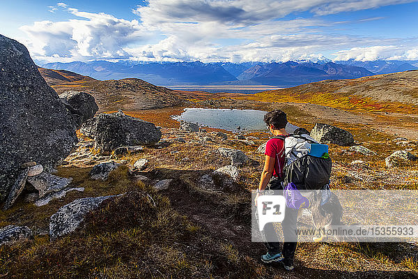 Woman backpacker and her dog backpacking on the Kesugi Ridge Trail in Denali State Park with views of Denali National Park and the Alaska Range in the background; Alaska  United States of America