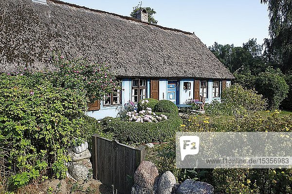 Blaues Haus  historisches Reetdachhaus  Warthe  Lieper Winkel  Insel Usedom  Mecklenburg-Vorpommern  Deutschland  Europa