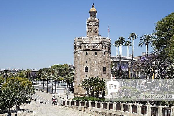 Goldturm  Torre del Oro  Sevilla  Andalusien  Spanien  Europa