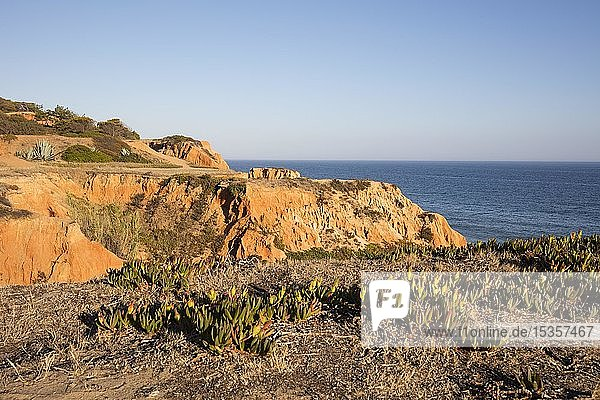 Felsenküste aus Sandstein bei Albufeira  Atlantikküste  Algarve  Portugal  Europa