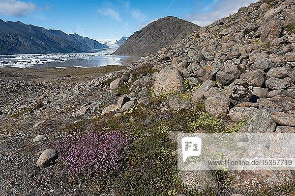 Felsen  Gletschersee und Gletscher  Heinabergsjökull  Island  Europa