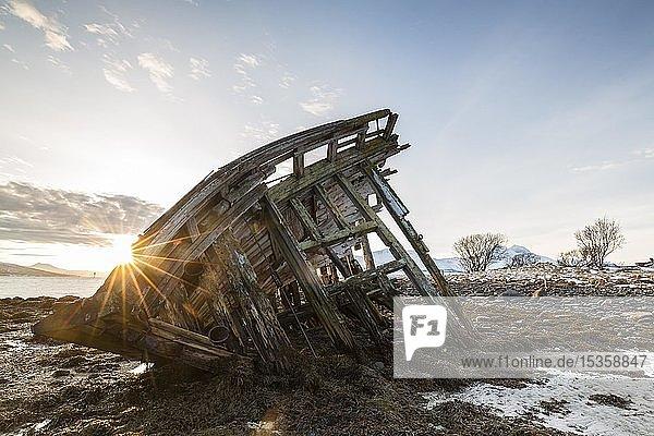 Schiffswrack bei Ebbe  Sonnenaufgang  Halbinsel Tisnes  Tromsö  Norwegen  Europa