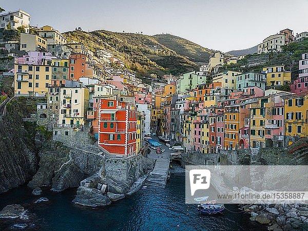 Ortsansicht  Riomaggiore  Luftaufnahme  bunte Häuser  Hafen  Cinque Terre  Ligurien  Italien  Europa