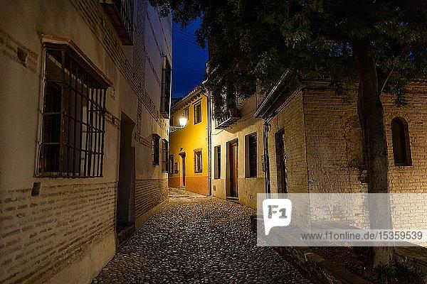 Beleuchtete Gasse  Altstadt  Granada  Andalusien  Spanien  Europa