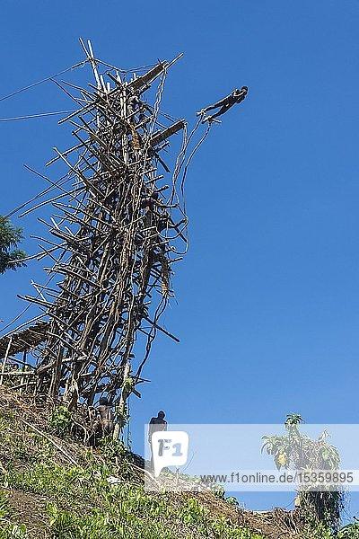 Mann springt von einem Bambus-Turm  Land-Tauchen  Pfingsten  Vanuatu  Ozeanien