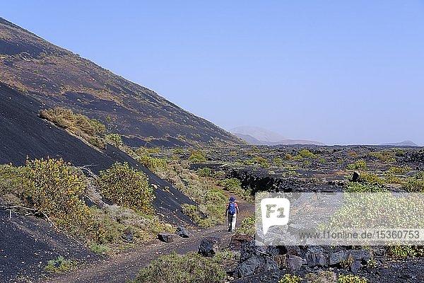 Frau wandert auf Wanderweg durch Lavafeld  Naturpark Los Volcanes  bei Tinajo  Lanzarote  Kanarische Inseln  Spanien  Europa