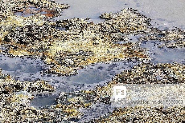 Fumarolen mit Mineralienablagerungen  Nationalpark Rincon de la Vieja  Provinz Guanacaste  Costa Rica  Mittelamerika