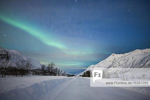 Nordlicht am schneebedeckten Kattfjordpass  Tromsö  Norwegen  Europa