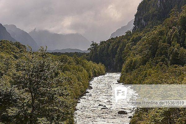 Rio Exploradores fließt durch Regenwald bei Puerto Río Tranquilo  Valle Exploradores  Parque Nacional Laguna San Rafael  Patagonien  Chile  Südamerika
