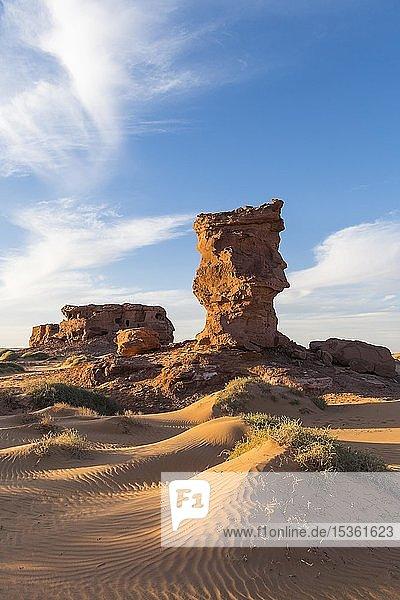 Abendlicht in der Sahara bei Timimoun  Algerien  Afrika