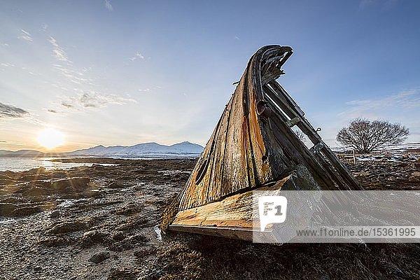 Schiffswrack bei Sonnenaufgang und Ebbe bei der Halbinsel Tisnes  Tromsö  Norwegen  Europa