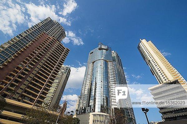 Hochhäuser im Zentrum von Panama City  Panama  Mittelamerika