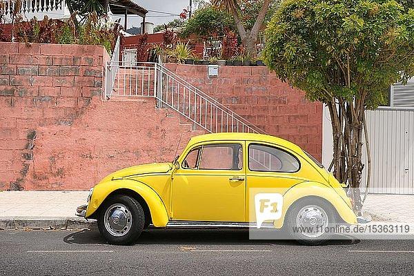 Gelber VW Käfer steht vor roter Mauer auf der Kanareninsel La Palma  Spanien  Europa