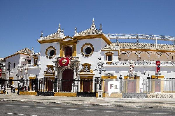 Stierkampfarena  La Real Maestranza  Sevilla  Andalusien  Spanien  Europa