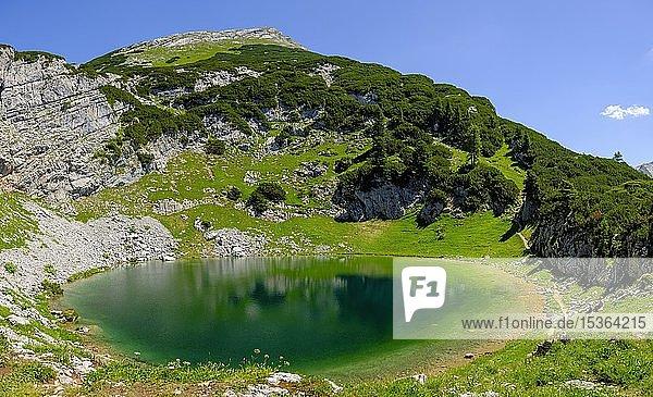 Seehornsee unter dem Gipfel des Seehorn  Bergsee  Berchtesgadener Alpen  Weißbach bei Lofer  Salzburger Land  Österreich  Europa