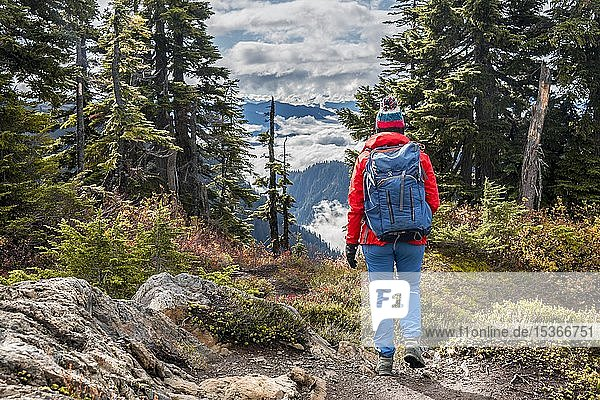Wanderin auf Wanderweg durch Wald in herbstlicher Berglandschaft  Mt. Baker-Snoqualmie National Forest  Washington  USA  Nordamerika