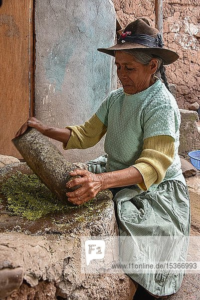 Local woman mortaring herbs  filling for the traditional Cuy dish  Cusco  Peru  South America